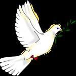2014 06 Peace dove