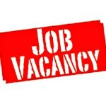 Job Vacancy ICON